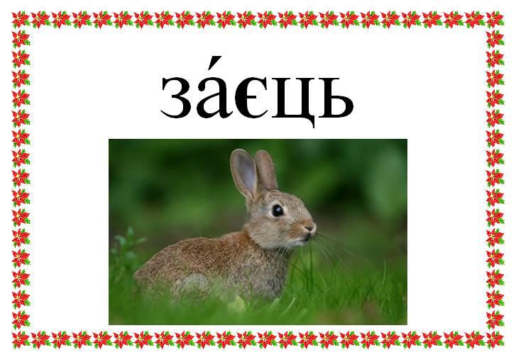 Малюнок зайця